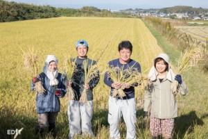 常滑市でヒヨクモチを育てている 農家の中野さんたち