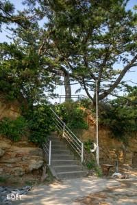この急な階段の先にブランコがあります